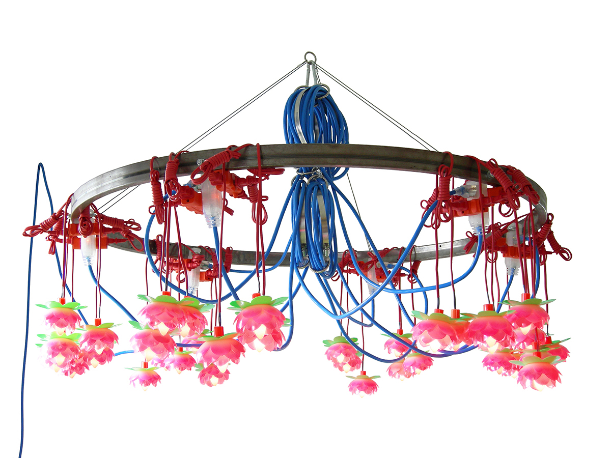 The Lotus Lamp by Kennedy Telford. Lotus lights arranged around a steel ring emit a soft pink light. Contemporary art, design, and objects from Oscar & Kennedy.